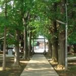 天祖神社(世田谷区中町)