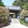 北条政子ゆかりの鎌倉のつつじの名所「安養院」