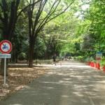 砧公園探索