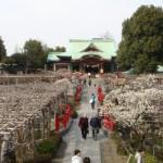 初詣にオススメ、東京の神社セレクション10選