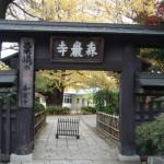 淡島の灸の森厳寺