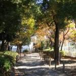 新田川緑道