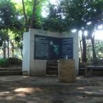 水辺が涼やかな実篤公園と武者小路実篤記念館