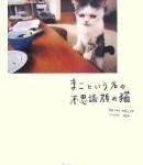 「まこという名の不思議顔の猫」前田 敬子,岡 優太郎著