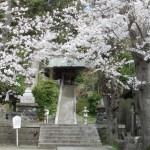 鎌倉の甘縄神明神社と安達館跡