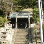 見頃を迎えた鎌倉最大の梅林「十二所果樹園」と「朝夷奈切通」