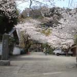 日蓮が立正安国論を提出した寺院「光則寺」