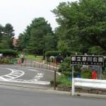 野川公園と野川(三鷹~調布付近)