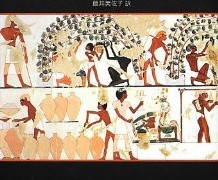 「食糧の帝国――食物が決定づけた文明の勃興と崩壊」フレイザー&リマス 著